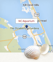 North Carolina Aquarium Map
